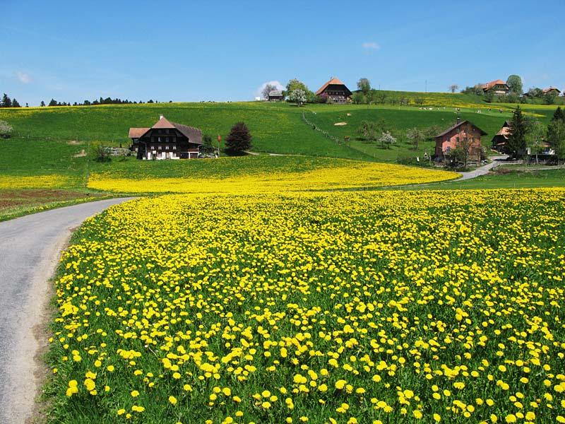 Emmental region, Švýcarsko