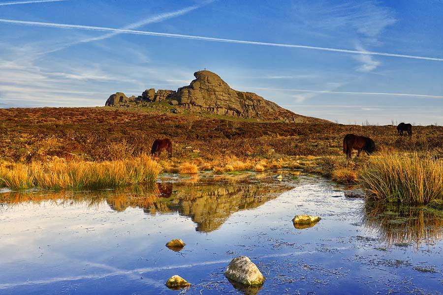 Haytor, NP Dartmoor, Anglie