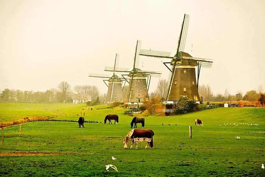 větrné mlýny, Nizozemsko