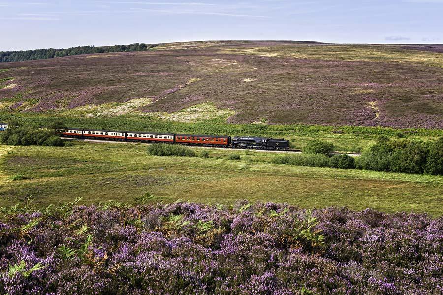 NP North York Moors, Anglie