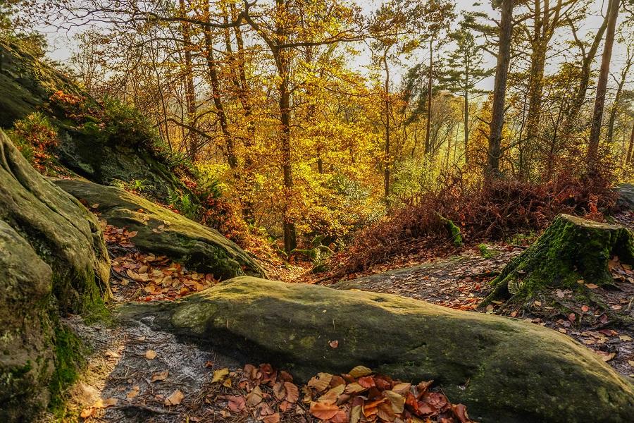 Nemecko Teutoburský les