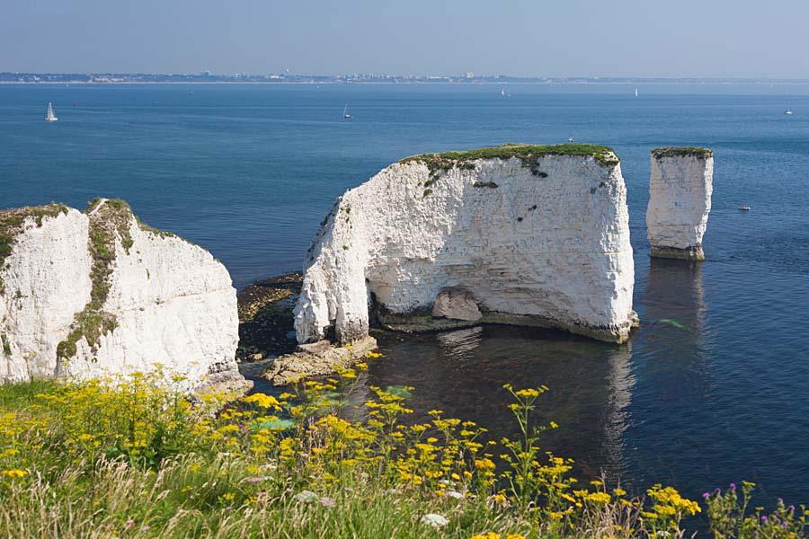 Old Harry Rocks, Dorset, Anglie