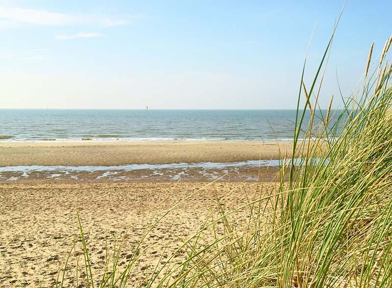 pobřeží Belgie